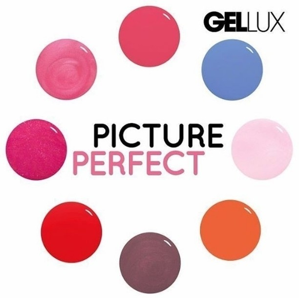 Which is your favourite colour from salonsystem Picture Perfect range?!hellip