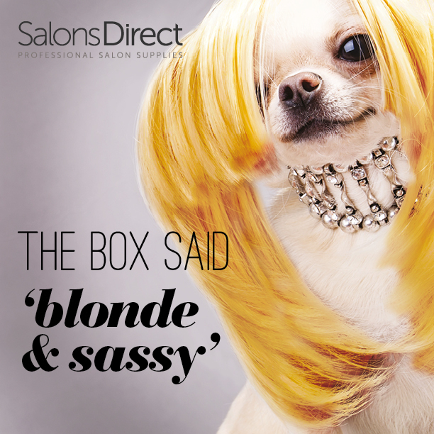 When youre feeling Blonde amp Sassy but the box dyehellip