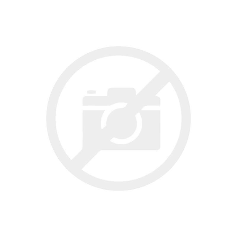 L'Oreal serie expert ABSOLUT REPAIR Lipidium Shampoo
