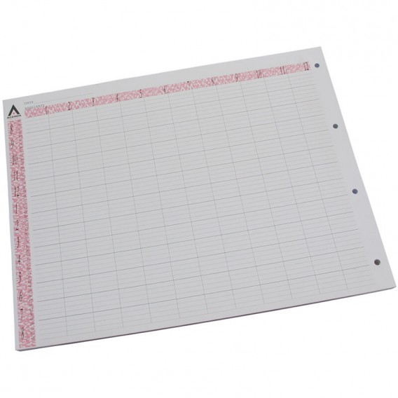 Agenda Loose Leaf Appointment Pages 12 Assistant (x 100)