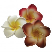 Spa Essenitals Floating Frangipani White x 10