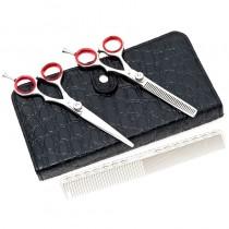 Academy Plus Scissor Set