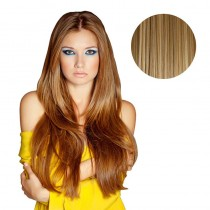 BiYa Instant Clip in Hairdo 10p613 Caramel/Brown/Blonde