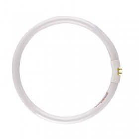 28 watt Circular Daylight Tube Bulb