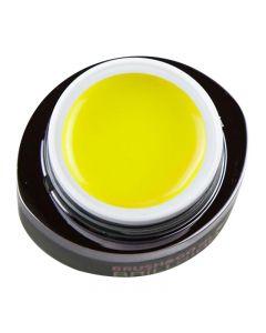 Brillbird Brush & Go Colour Gel 125 4.5ml