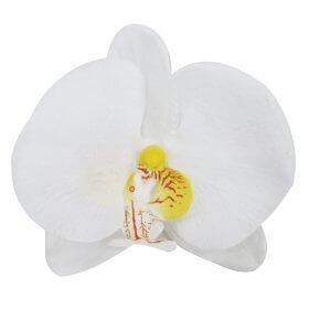 Spa Essentials White Orchid Decor Head