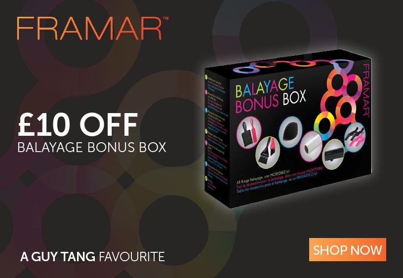 Framar Balayage Bonus Box | Salons Direct
